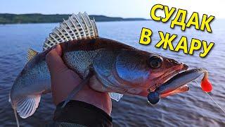 СУДАК В ЖАРУ НА ДЖИГ Рыбалка летом на спиннинг 2020 Ловля судака на спиннинг