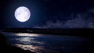 Fall Asleep Faster ★︎ Beat INSOMNIA ★︎ Meditation Music, Delta Waves, Dark Screen