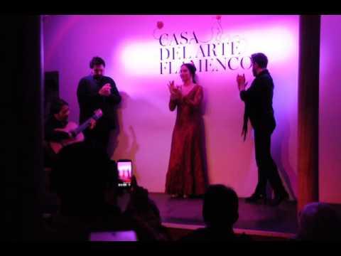 La Casa del Arte Flamenco - Granada