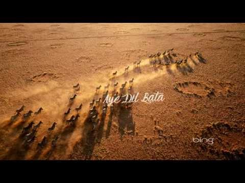 Aye Dil Bata - Lyrics - Arijit Shingh - .TF