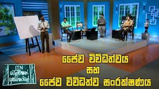 ITN Television Iskole - (2020-06-04) | ITN Thumbnail