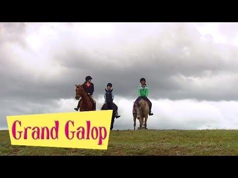 Grand Galop 210 - Libre comme l'air (Partie 1) | HD | Épisode Complet