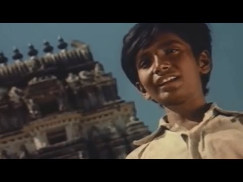 Erra Mallelu Movie || Naampalli Tesanukaadi Video Song || Madala Ranga Rao, Murali Mohan
