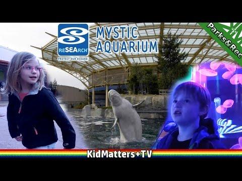 Sea Life! A day tour of Mystic Aquarium. Part 1 [KM+ParksRec S01E08]