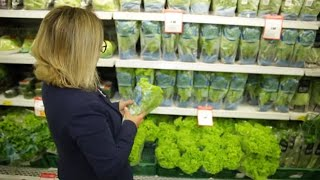 IV Seminário Estadual Setembro Verde vai tratar da alimentação saudável