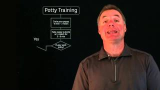 Pet Training Program - Potty Training Your Puppy