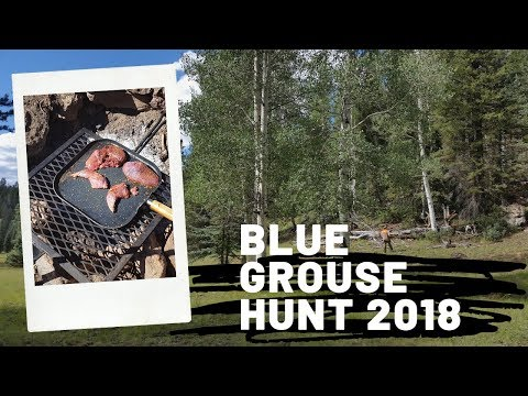 Blue Grouse Hunt 2018