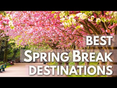 Best Spring Break Destinations HD