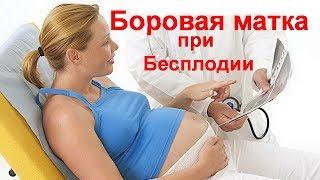 можно ли и как забеременеть. Бесплодие. Народные методы лечения бесплодия у женщин - № 2