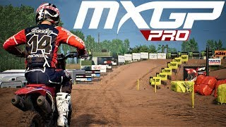 MXGP PRO - MOD | Cole Seely #14 | Troy Lee Designs 2018 | By LEONE 291 | Preview