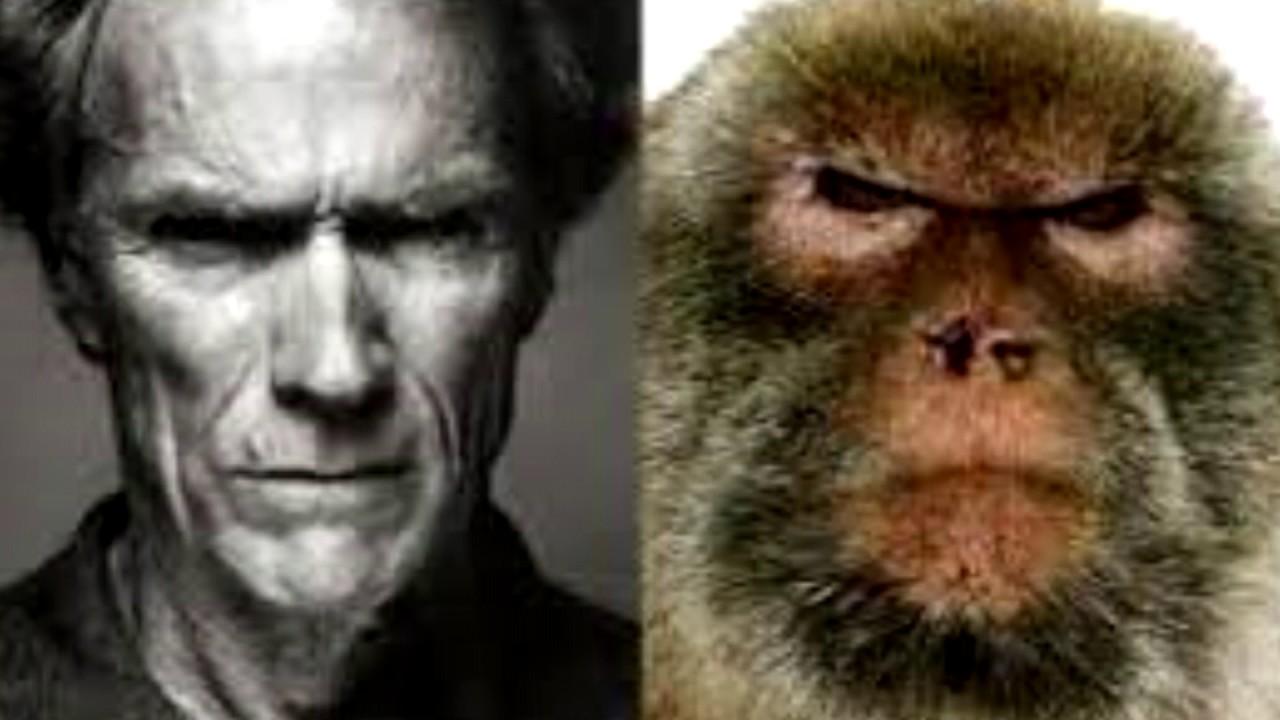 Top 10 Neanderthal RH ...
