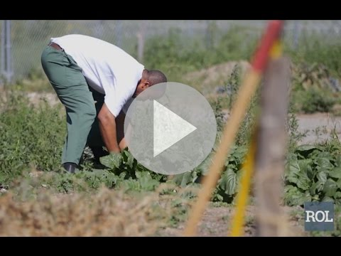 How These Prison Inmates Scored Organic Vegetables From The Inside