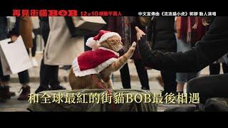12/10【再見街貓BOB】永不分離版預告|感動全球真實故事,和街貓BOB的大銀幕最後相遇!