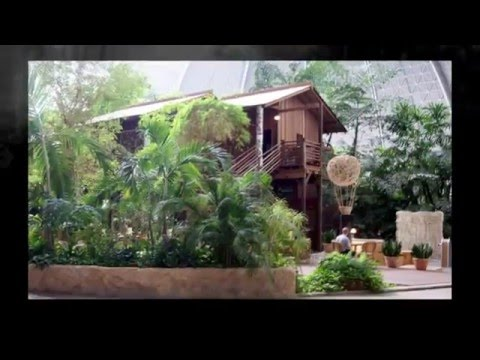 Trip: Niemcy - Tropical Island (Krausnick). 2012-08-05