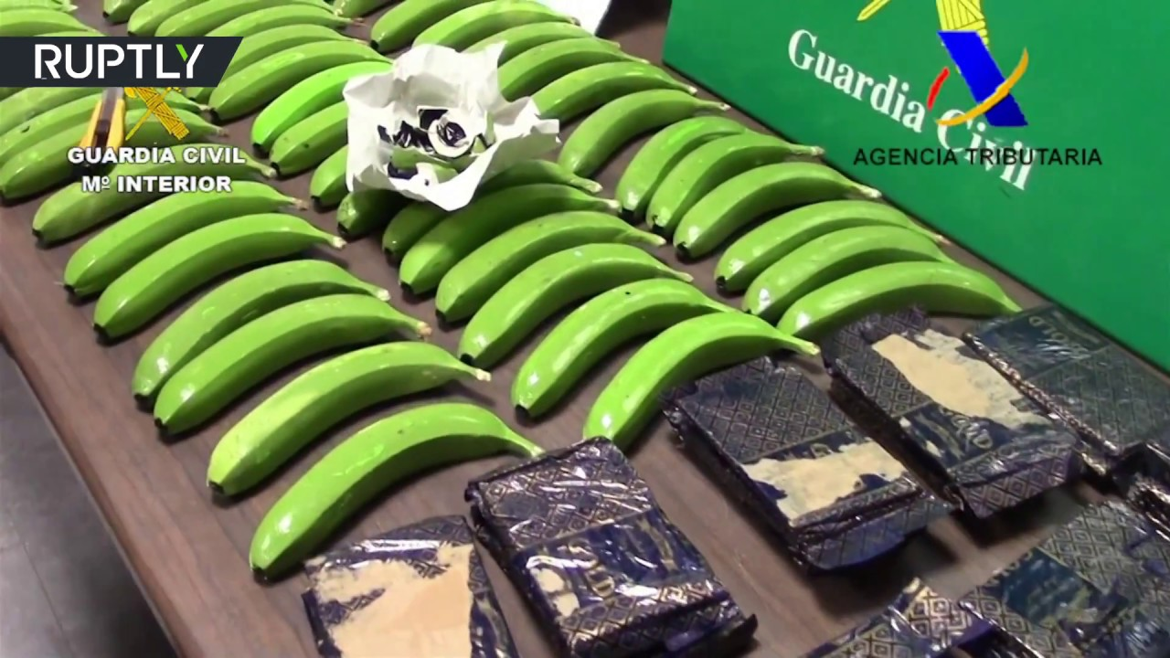 That's bananas! 17 kg of cocaine found hidden inside fake fruits by Spanish police