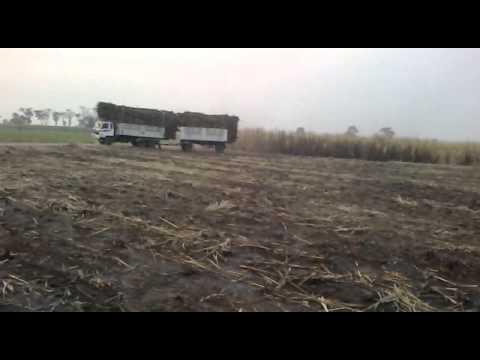 รถบรรทุกอ้อยชัยภูมิ2