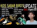 Harga Burung Cucak Ijo Paruh Tembus Tledekan Gunung Trucuk Srdc Bali Kacer Dll Dikios Sabar Bird  Mp3 - Mp4 Download