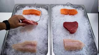 Fish Ice Display - Timelapse Comparison