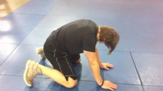 Just The Tip:  Quadruped Hip Mobility For a Deeper Squat