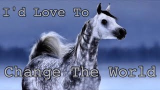 I'd Love To Change The World || Arabian Horse Music Video ||