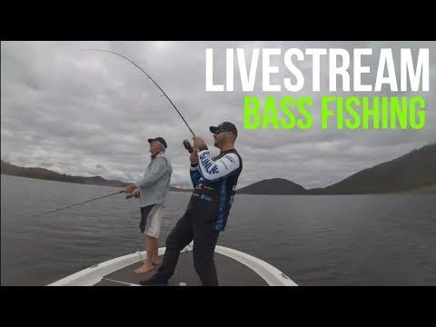 Somerset Dam Live Stream Bass Fishing