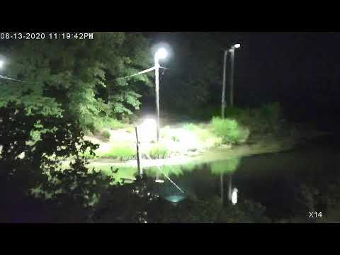 🔴-lonestar-live-rotating-pond-weather-cam---live---hd