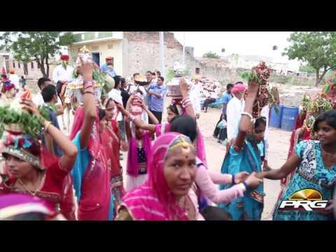 Superhit DJ Song-हरिया हरिया बागा  में  बोल रे सुवटिया    Dharam Dhari Live    PRG Full HD Video