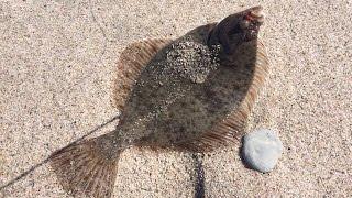 морская рыбалка с берега ! майская камбала 2017 !!!