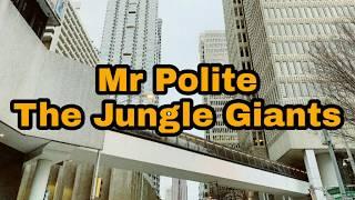 ◁The Jungle Giants - Mr. Polite▷🗻Lyrics