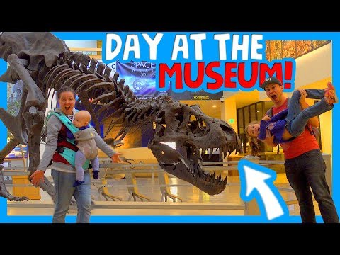 🦕 BEST MUSEUM IN NEW MEXICO 🐕 DIY RV KITCHEN REMODEL 🦖