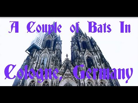 A Couple of Bats in Germany (Cologne Cathedral, Basilica of St. Ursula)