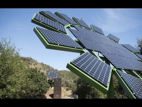 James Cameron's Plan to Fix Solar Panels Photovoltaic sunflowers James Cameron will be made public