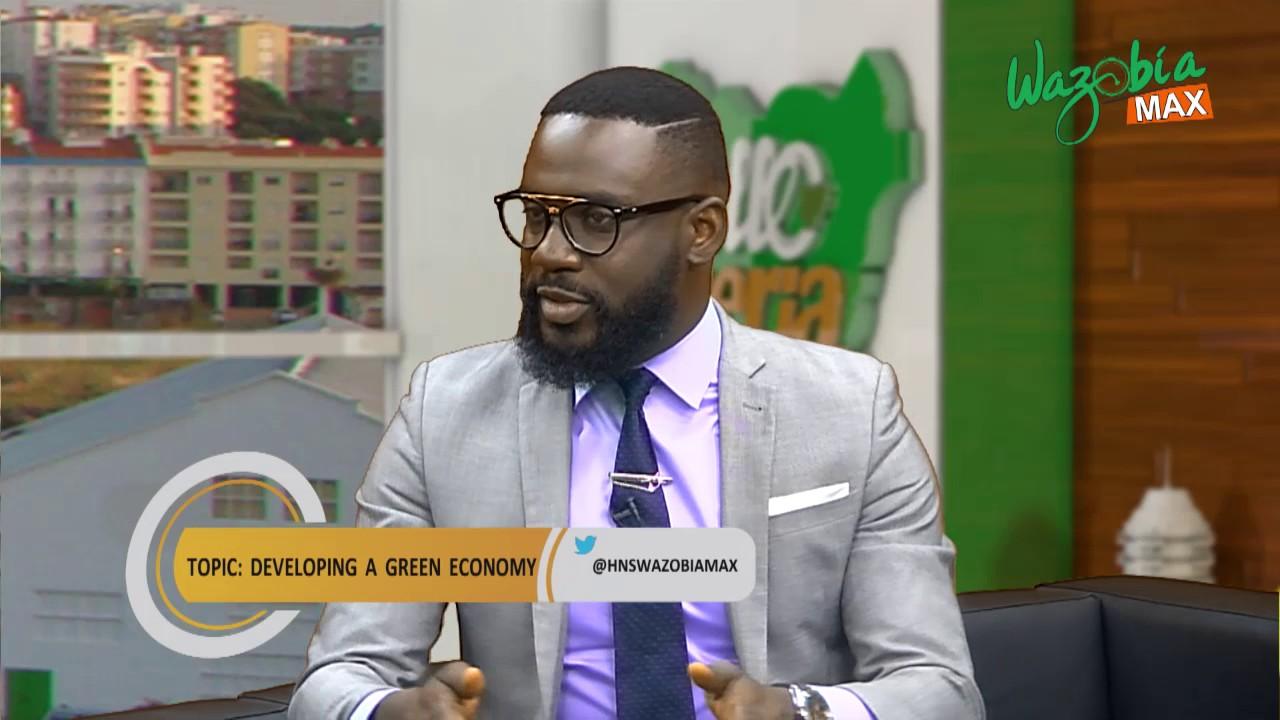 Download Developing a green economy - Ayoola jolayemi - HELLO NIGERIA