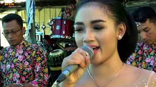 Langgam Gelo // Cs.Roso Tresno // HVS Production // Margo Laras Audio