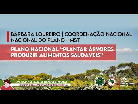 "Plano Nacional ""Plantar"