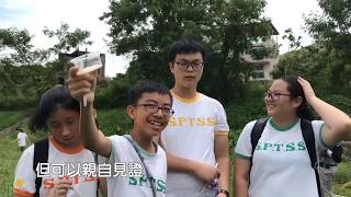 Publication Date: 2019-07-13 | Video Title: 螢火蟲愛回家