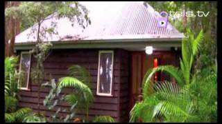 Gold Coast Hotels: Songbirds Rainforest Retreat – Australia Hotels and Accommodation – Hotels.tv