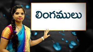 Teachers Planet తెలుగు సామాన్య