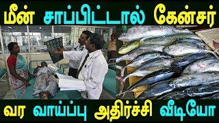 மீன் சாப்பிட்டால் கேன்சர் வர வாய்ப்பு அதிர்ச்சி வீடியோ | Kollywood News Tamil Cinema News Tamil News