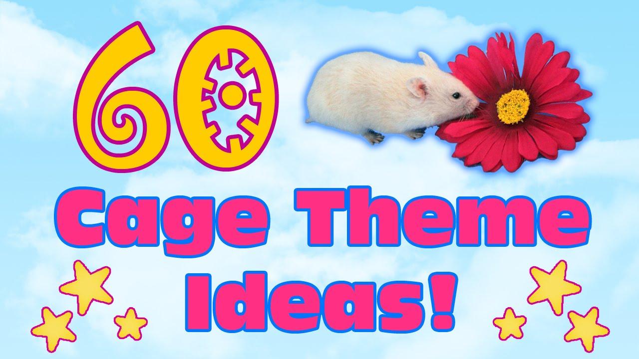 Pet Rat Cages Ideas
