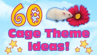 60 Creative Cage Theme Ideas For Pets! (List)