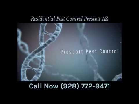 Residential Pest Control Prescott AZ