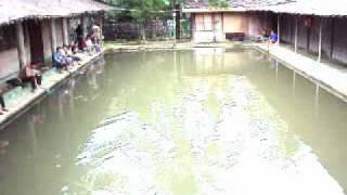 kolam-pemancingan.flv