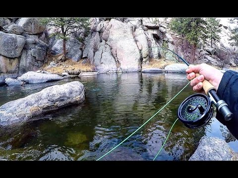 Video Fly fishing for catfish