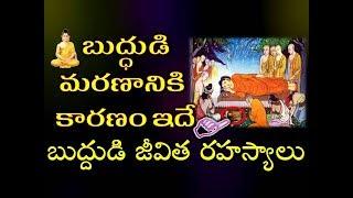 బుద్ధుడి మరణానికి కారణం ఇదే,ఎవరికీ తెలియని జీవిత రహస్యాలు,బుద్ధ చరిత్ర|#Buddha Pournima Significance