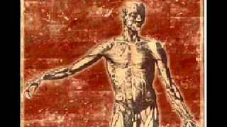 The Hunkies - Twarda Dyscyplina
