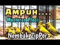 Pleci Nembak Zipper  Ampuh Untuk Masteran Pleci Agar Nembak Buka Paruh  Mp3 - Mp4 Download