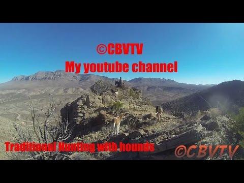 ©CBVTV Trailer