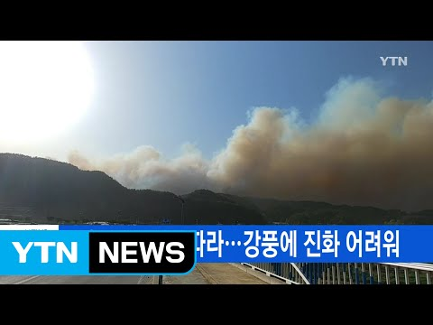 [YTN 실시간뉴스] 강원도 산불 잇따라...강풍에 진화 어려워 / YTN