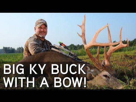 Early Season Bowhunting   Big Kentucky Buck Down!